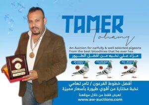 ... Mr Tamer Tohamy