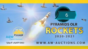 Pyramids Rockets (6)