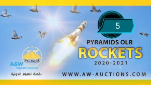 Pyramids Rockets (5)