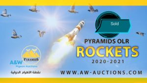 Pyramids Rockets that sold